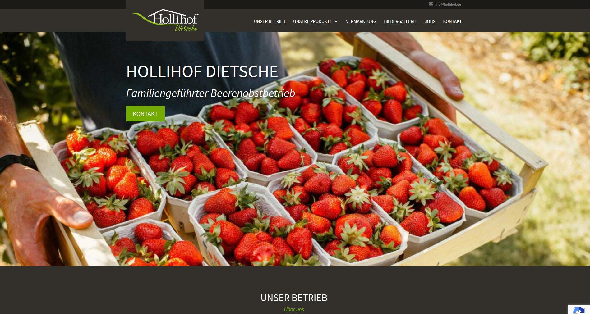 Webseite für den Hollihof Hartheim
